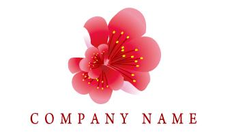 花、春、桜、梅、花弁、和風、古風
